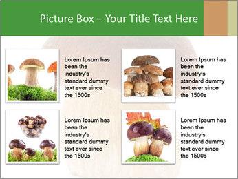 0000061568 PowerPoint Template - Slide 14