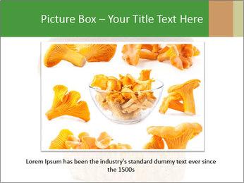 0000061568 PowerPoint Template - Slide 16