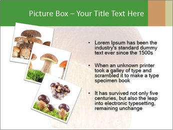 0000061568 PowerPoint Template - Slide 17