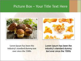 0000061568 PowerPoint Template - Slide 18