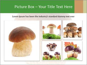 0000061568 PowerPoint Template - Slide 19