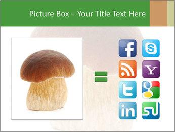 0000061568 PowerPoint Template - Slide 21
