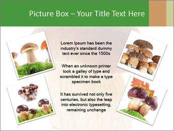 0000061568 PowerPoint Template - Slide 24