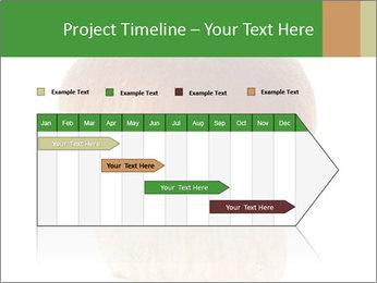 0000061568 PowerPoint Template - Slide 25