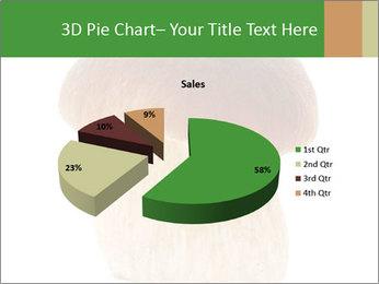 0000061568 PowerPoint Template - Slide 35
