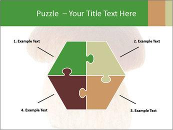 0000061568 PowerPoint Template - Slide 40