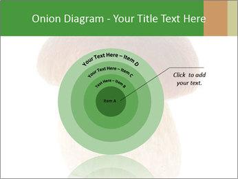 0000061568 PowerPoint Template - Slide 61