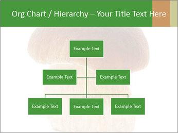 0000061568 PowerPoint Template - Slide 66