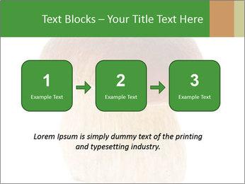0000061568 PowerPoint Template - Slide 71