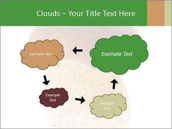 0000061568 PowerPoint Template - Slide 72