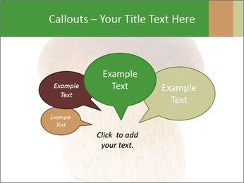 0000061568 PowerPoint Template - Slide 73