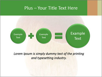 0000061568 PowerPoint Template - Slide 75
