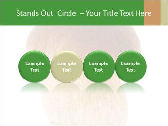 0000061568 PowerPoint Template - Slide 76