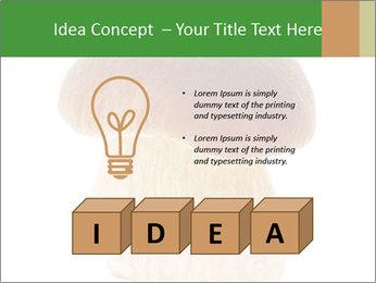 0000061568 PowerPoint Template - Slide 80