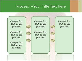 0000061568 PowerPoint Template - Slide 86