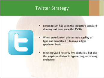 0000061568 PowerPoint Template - Slide 9