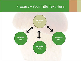 0000061568 PowerPoint Template - Slide 91