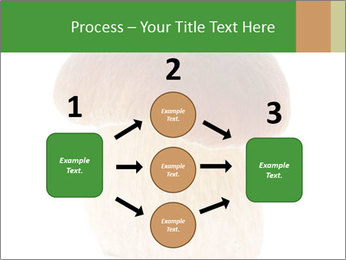 0000061568 PowerPoint Template - Slide 92