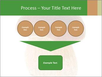 0000061568 PowerPoint Template - Slide 93