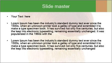 0000061568 PowerPoint Template - Slide 2