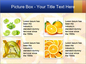 0000061573 PowerPoint Templates - Slide 14