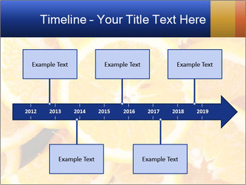 0000061573 PowerPoint Template - Slide 28