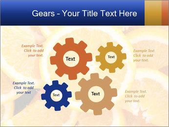 0000061573 PowerPoint Templates - Slide 47