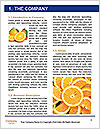 0000061573 Word Templates - Page 3