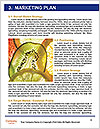 0000061573 Word Templates - Page 8