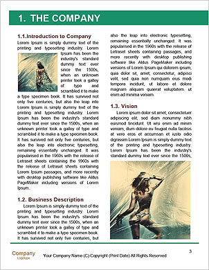 0000061575 Word Template - Page 3