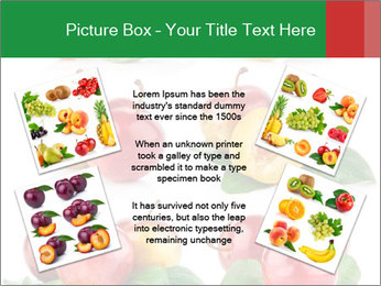 0000061587 PowerPoint Templates - Slide 24