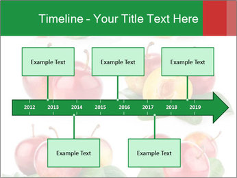 0000061587 PowerPoint Template - Slide 28