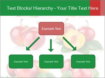 0000061587 PowerPoint Templates - Slide 69