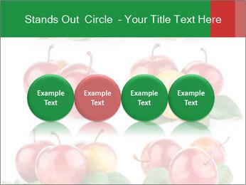 0000061587 PowerPoint Template - Slide 76
