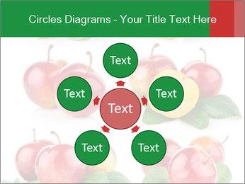 0000061587 PowerPoint Template - Slide 78