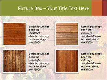 0000061598 PowerPoint Template - Slide 14