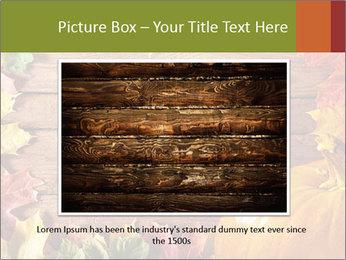 0000061598 PowerPoint Template - Slide 15