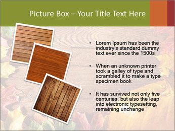 0000061598 PowerPoint Templates - Slide 17