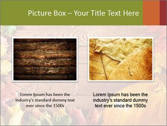 0000061598 PowerPoint Template - Slide 18