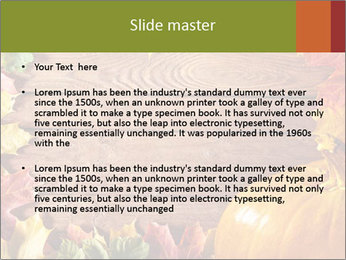 0000061598 PowerPoint Templates - Slide 2