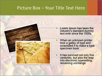 0000061598 PowerPoint Template - Slide 20
