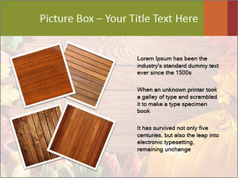 0000061598 PowerPoint Template - Slide 23