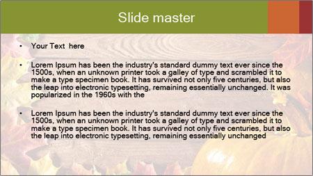 0000061598 PowerPoint Template - Slide 2
