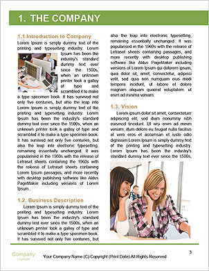0000061603 Word Template - Page 3