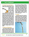 0000061614 Word Template - Page 3