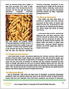 0000061614 Word Template - Page 4