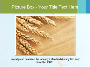 0000061615 PowerPoint Template - Slide 15