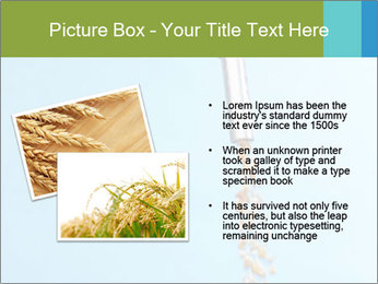 0000061615 PowerPoint Template - Slide 20