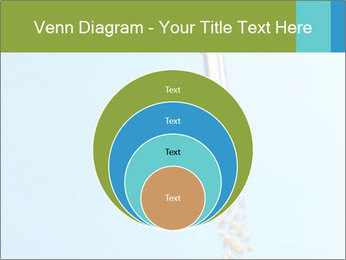 0000061615 PowerPoint Template - Slide 34