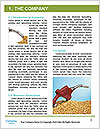 0000061615 Word Template - Page 3